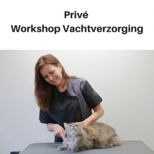 Prive Workshop Vachtverzorging