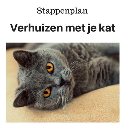 verhuizen met je kat