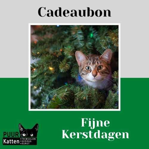 cadeaubon katten kerst