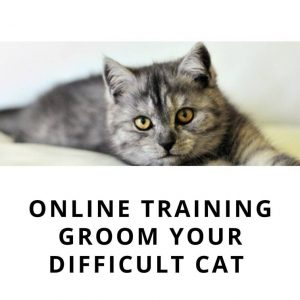 cat scratches during grooming