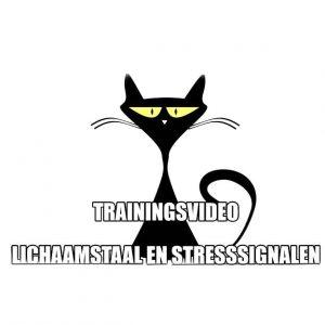 trainingsvideo Lichaamstaal en Stresssignalen